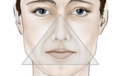 The inverted triangle of beauty presented on an illustrated female face.